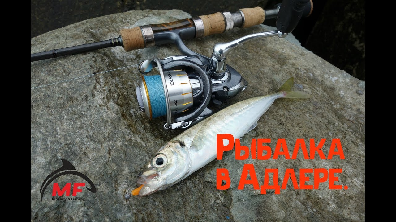 рыбалка в адлере на спиннинг