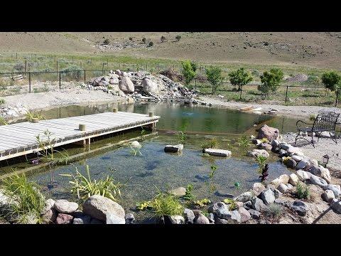 Natural Swimming Pool Construction (Part 1)