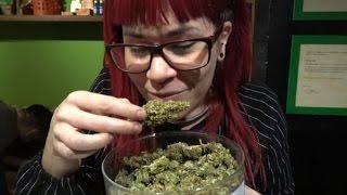 Greenardo Cannabis Social Club Barcelona Spain on Hash Bar TV