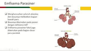 Pengaturan Makan pada Penderita Penyakit Paru Obstruktif Kronis ( PPOK / COPD ).