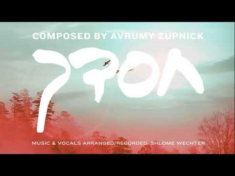 Chasdecha - Song Composed By Avrumy Zunpick | אברומי זופניק - חסדך