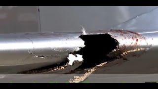 bird vs plane | bird strike jet engine | emergency landing bird strike |  part 29