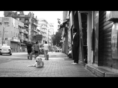 Shaul Bustan - Shalma