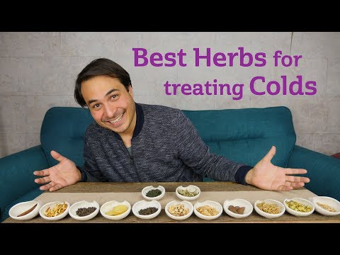 Best Herbs for Common Colds