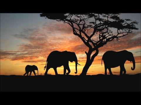 The Piano Guys Ft Alex Boye - Paradise (Peponi) Coldplay Cover