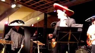 M.A Numminen & Tijuana Taxi - Sun kanssasi haluan sunnuntaina ongelle (Esakallio