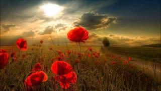 Maurice Ravel - Concerto en sol majeur (Adagio assai) - François-René Duchable