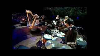 Good Intentions Paving Company - Joanna Newsom - Austin City Limits