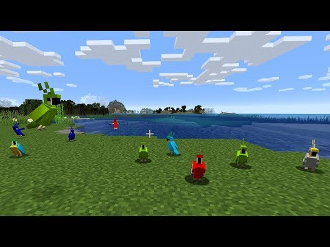 Minecraft: How To Tame A Parrot - (Minecraft Taming Parrots)
