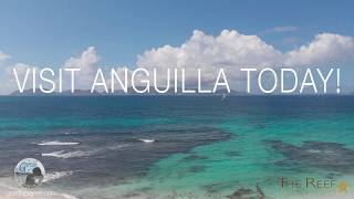 Discover Anguilla & The Reef at Cuisinart