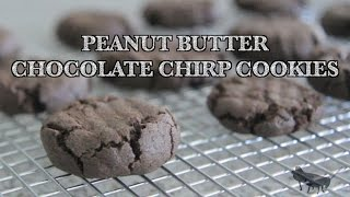 Peanut Butter Chocolate Chirp Cookies | Rule Of Yum Recipe