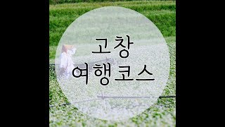 고창 여행코스 - 꽃무릇, 메밀꽃, 고창문화재 야행, …