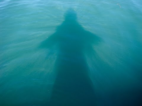 How To Know If Your Spirit Guides Are Guiding You