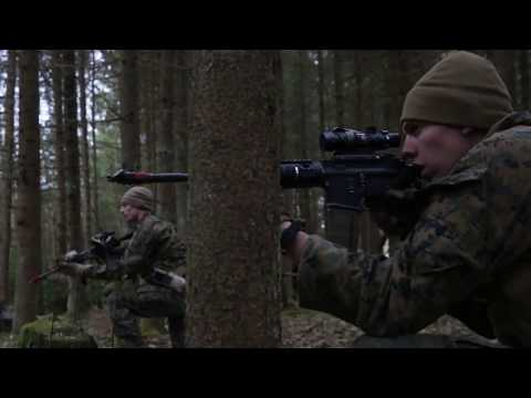 DFN:Exercise Hedgehog: B-Roll, Repelling Attack, TORU, ESTONIA, 05.02.2018