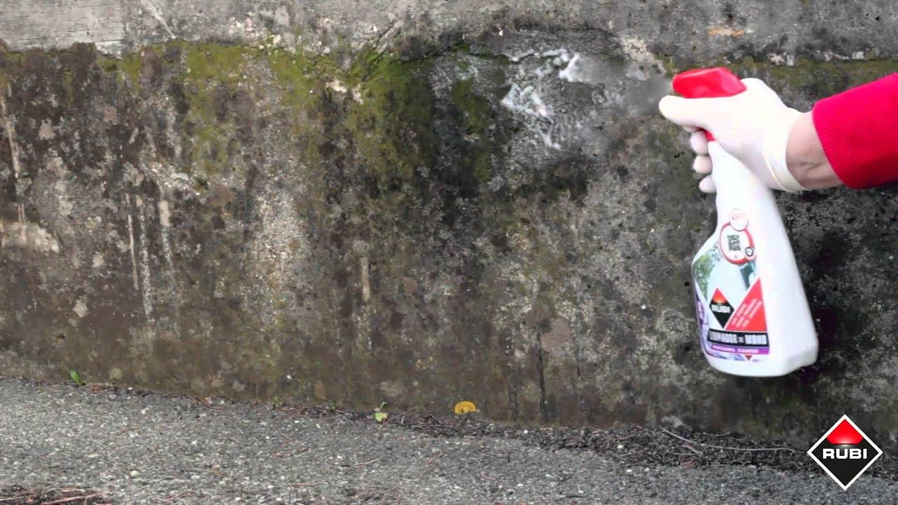 Como quitar el moho rubi ro 82 limpiador de moho youtube - Como quitar moho de la pared ...