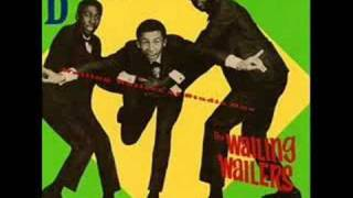 The Wailers - Rude Boy
