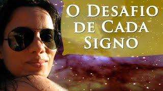 O DESAFIO DE CADA SIGNO - CARACTERÍSTICAS DE CADA SIGNO - PERFIL DOS SIGNOS - PAULA PIRES
