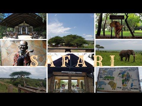 Masai Mara'da Safari - Aslanların Kapışması | KENYA