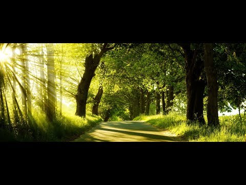 Secret to meditation /Adhyatm ki or/Stress Management - Hindi 100 percent effective