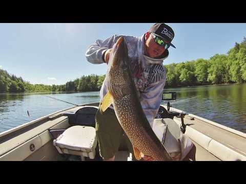 Top 5 Baits For Spring Pike Fishing