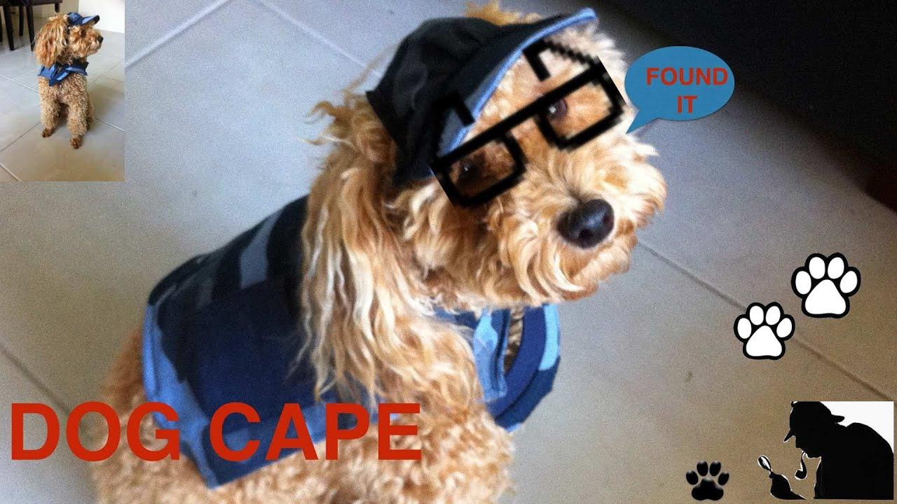 How To Make A Service Dog Cape