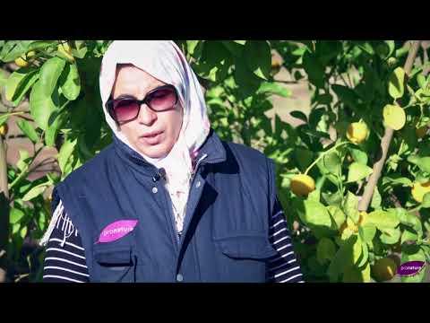 ProNatura Maroc Episode 1: la certification
