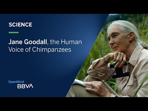 Jane Goodall, The Human Voice Of Chimpanzees | OpenMind