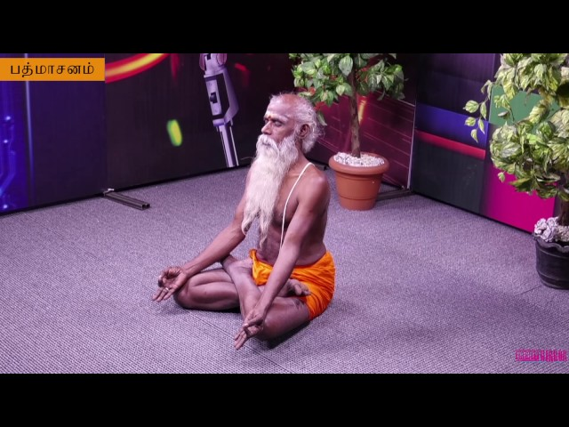 Daily One Yoga | Padmasanam | தினம் ஒரு யோகா | பத்மாசனம்
