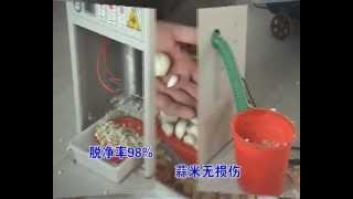 garlic peeling machine email frank sapwells net