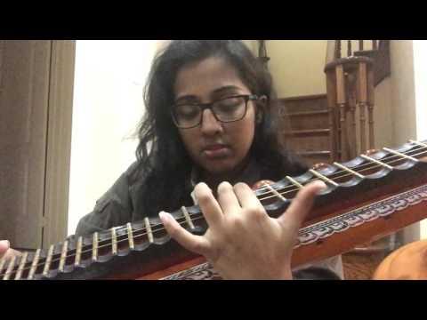 Kabira/ Ghagra- Yeh Jawaani Hai Deewani (Veena Cover)