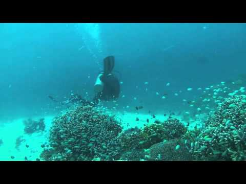 Pulau Gangga Biorock Project, North Sulawesi, Indonesia