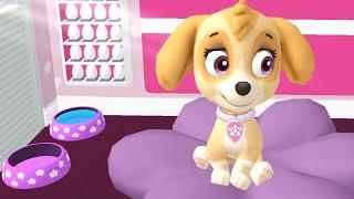 Paw Patrol A Day in Adventure Bay - Cute Skye Daily Life! - Fun Pet Kids Games