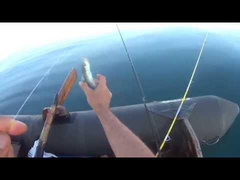 ловим в испании видео