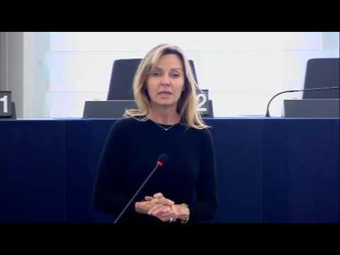 Frédérique Ries 24 Oct 2016 plenary speech on EU strategy towards Iran
