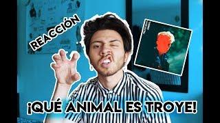 REACCIÓN A 'ANIMAL' - TROYE SIVAN | Niculos M