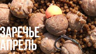 Ловля карпа ранней весной. История одной рыбалки (с послесловием).