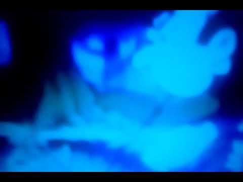 Конец фильма творческое объединение экран