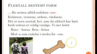 Norsk grammatikk - Ordklasser del 1: Substantiv