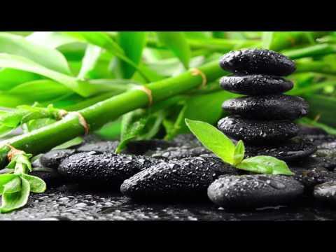 Mindfulness - Gerald Jay Markoe [1080p]
