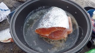 Catch and Cook Pink Trout | Winter Trout Underneath Waterfalls! thumbnail