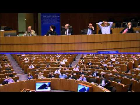 Pan-European Forum on Media Pluralism and New Media - European Parliament - PM SESSION