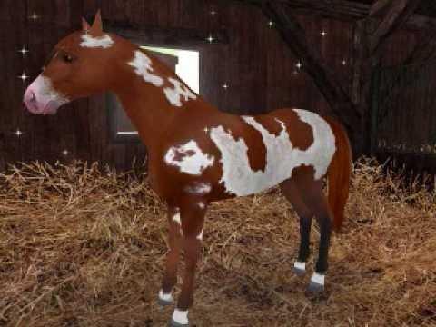 Coole Pferdespiele