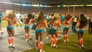 My Jets and Dolphins Game Experience in Miami! - NFL - JRSportBrief