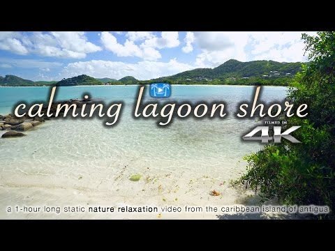 4K Calming Caribbean Lagoon Shore Nature Relaxation Video - Antigua UHD - SonyA7RII