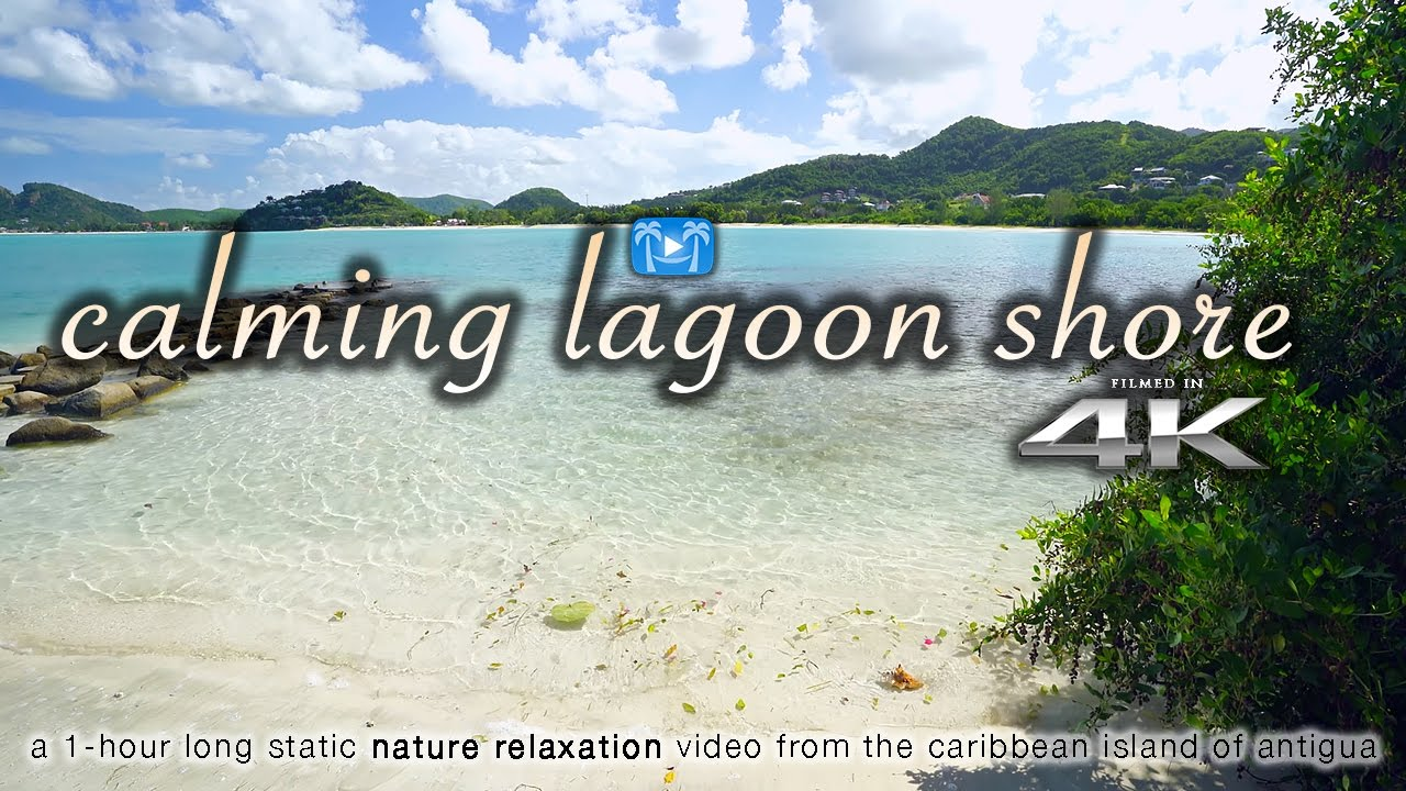 Stress less coloring by the shore - 4k Calming Caribbean Lagoon Shore Nature Relaxation Video Antigua Uhd Sonya7rii