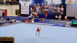 Денис Аблязин,Кубок России по спортивной гимнастике 2017 в г.Екатеринбурге