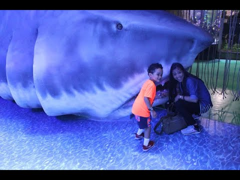 Dubai Mall and Dubai Aquarium Visit
