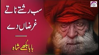 New Punjabi Poetry | Baba Bulleh Shah | 2 Line Punjabi Poetry | Punjabi Shayari | Two Line Poetry