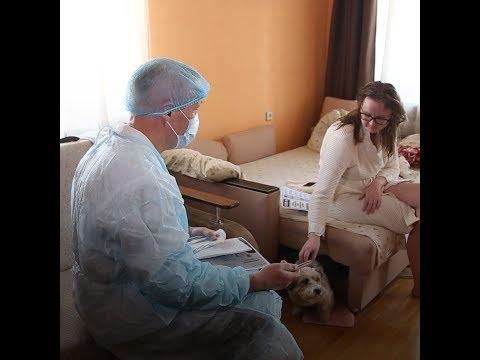 В Челябинске врачи и полицейские проверяют тех, кто на карантине по коронавирусу | 74.RU