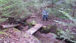 Lill' Joe Playing In The Mud & Small Bridge Over Creek